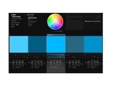 colour palette1